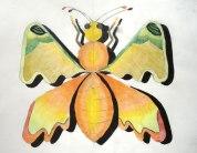 farfalla_5
